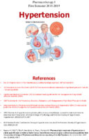 S01 Tharapy1 Hypertension After-modification Pdf